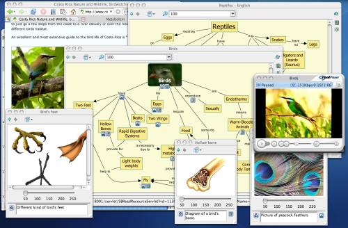Peta Konsep Burung