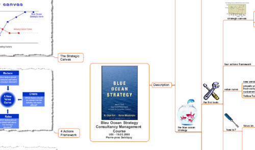 six principles of blue ocean strategy pdf