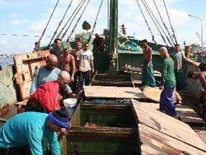 Kapal Republik Indonesia (KRI) Pulau Rangsang menangkap dua kapal ikan Thailand yang mencari ikan secara ilegal di perairan Indonesia. Sebanyak 29 anak buah kapal (ABK) dengan barang bukti 55 drum ikan diamankan di Pangkalan Laut Pontianak. Tampak beberapa ABK kapal memperlihatkan kompartemen berpendingin untuk ikan tangkapan di Pangkalan Laut Pontianak.