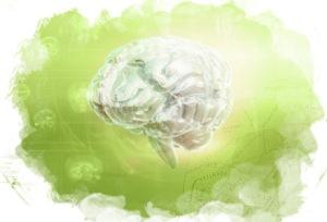 Our Precious Brain